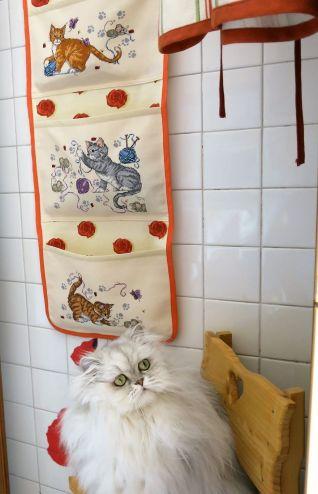 Pannello gattini con tre tasce porta tutto