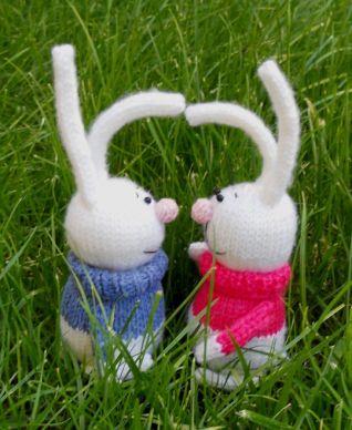 conigli a maglia