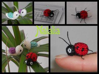 mini insetti - coccinella 2x1 cm