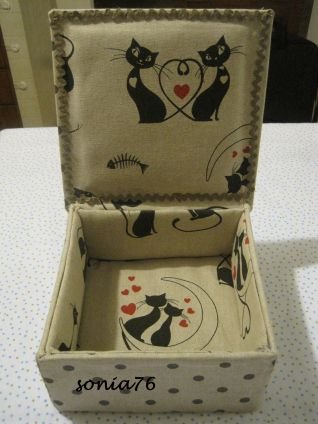 scatola gatti_interno