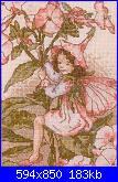 DMC - The Flower Fairies (Cicely Mary Barker) - schemi e link-003-floks-p-omyk-wiechowaty-phlox-paniculata-0-jpg
