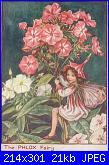 DMC - The Flower Fairies (Cicely Mary Barker) - schemi e link-003-floks-p-omyk-wiechowaty-phlox-paniculata-jpg