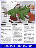 Riolis - schemi e link-1-jpg