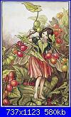 DMC - The Flower Fairies (Cicely Mary Barker) - schemi e link-black-bryony-fairy-jpg