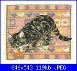 Lesley Anne Ivory - schemi e link-lesley-ivory-cats-jpg