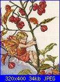 DMC - The Flower Fairies (Cicely Mary Barker) - schemi e link-00_picture-jpg