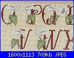 Alfabeti  fiori ( Vedi ALFABETI ) - schemi e link-calle2-jpg