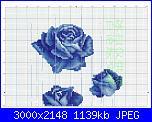 Rose, Roses, Rosas, Rosen - schemi e link-image1-jpg