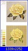 Rose, Roses, Rosas, Rosen - schemi e link-img091-jpg