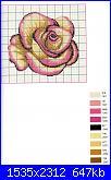 Rose, Roses, Rosas, Rosen - schemi e link-img105-jpg