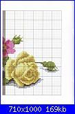 Rose, Roses, Rosas, Rosen - schemi e link-7-jpg