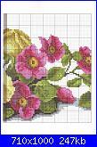Rose, Roses, Rosas, Rosen - schemi e link-6-jpg