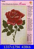 Rose, Roses, Rosas, Rosen - schemi e link-01-35-jpg