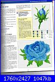 Rose, Roses, Rosas, Rosen - schemi e link-img142-jpg