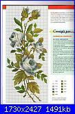 Rose, Roses, Rosas, Rosen - schemi e link-img139-jpg