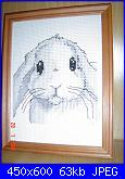 Conigli e Coniglietti - schemi e link-b-jpg