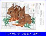 Conigli e Coniglietti - schemi e link-c-jpg