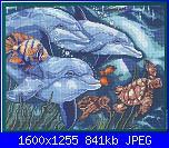 Mare - schemi e link-delfini-jpg