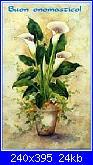 Auguri a tutte le Chiara !!!-buon-onomatico-calle-jpg