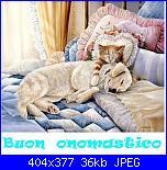 Buon onomastico.....-gattino-e-cane-dormono-insieme-jpg