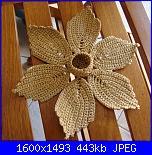 stella di natale-dsc00648-jpg