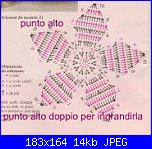 stella di natale-74319_178576838825913_178252962191634_686818_5708060_n-jpg