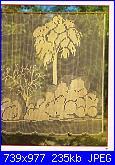 Rivista: BURDA filet all'uncinetto n.2 1981-ccf04052011_00021-jpg