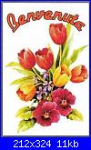 mi presento...-benvenuta-tulipani-m-jpg