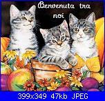 Ci sono anch'io-3-gattini-fiori-bv-tra-noi-jpg