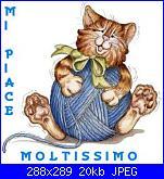 Richiesta nomi  SANTO e  MARIA-mi-piace-moltissimo-gatto-gomitolo-jpg