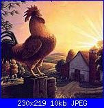 galletto chicchirichì-gallo-jpg