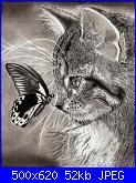 gatto con farfalla-12714394_10205960571879493_1195551433_n-jpg