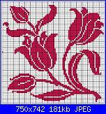 tulipani filet e non-tulipanes-jpg