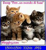 """Swap: """"Frrr...un mondo di fusa""""-swap-jpg"""
