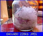 Sal dei filini spazzatura 2021-sal-filini-jpg