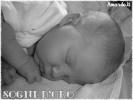 E' nato Samuel il nipotino di maria teresa49-small_119970289510%5B1%5D-jpg
