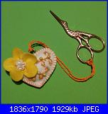 Foto swap trovaforbici-r1-jpg