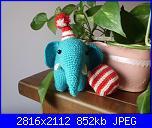 Foto SAL elefantino da circo-rox-1-jpg