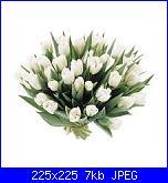 auguri tulipanobianco-imagesx-jpg