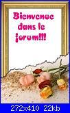 Una piccola francese tra voi-bienvenue-jpg