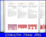Libri maglia - 150 bordi ai ferri - fiori ai ferri   1-14-02-2011-040-jpg