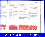 Libri maglia - 150 bordi ai ferri - fiori ai ferri   1-14-02-2011-041-jpg
