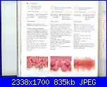 Libri maglia - 150 bordi ai ferri - fiori ai ferri   1-14-02-2011-042-jpg