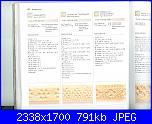 Libri maglia - 150 bordi ai ferri - fiori ai ferri   1-14-02-2011-046-jpg