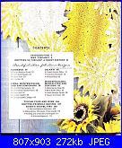 Nicky Epstein-Knitting in Tuscany anno 2009-3-jpg