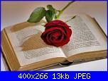 23 Aprile 2012 - Giornata mondiale del libro e delle rose-rosa-e-libro-san-giorgio-jpg