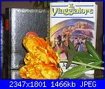 Foto per suggerire un libro-dsci0138-jpg