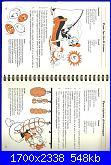 manuale di nonna papera-immagine-27-jpg