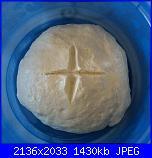Lievito naturale LINCO-15-12-14-003-jpg