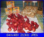 sfoglia crema pasticcera e fragole-immagini-001-jpg